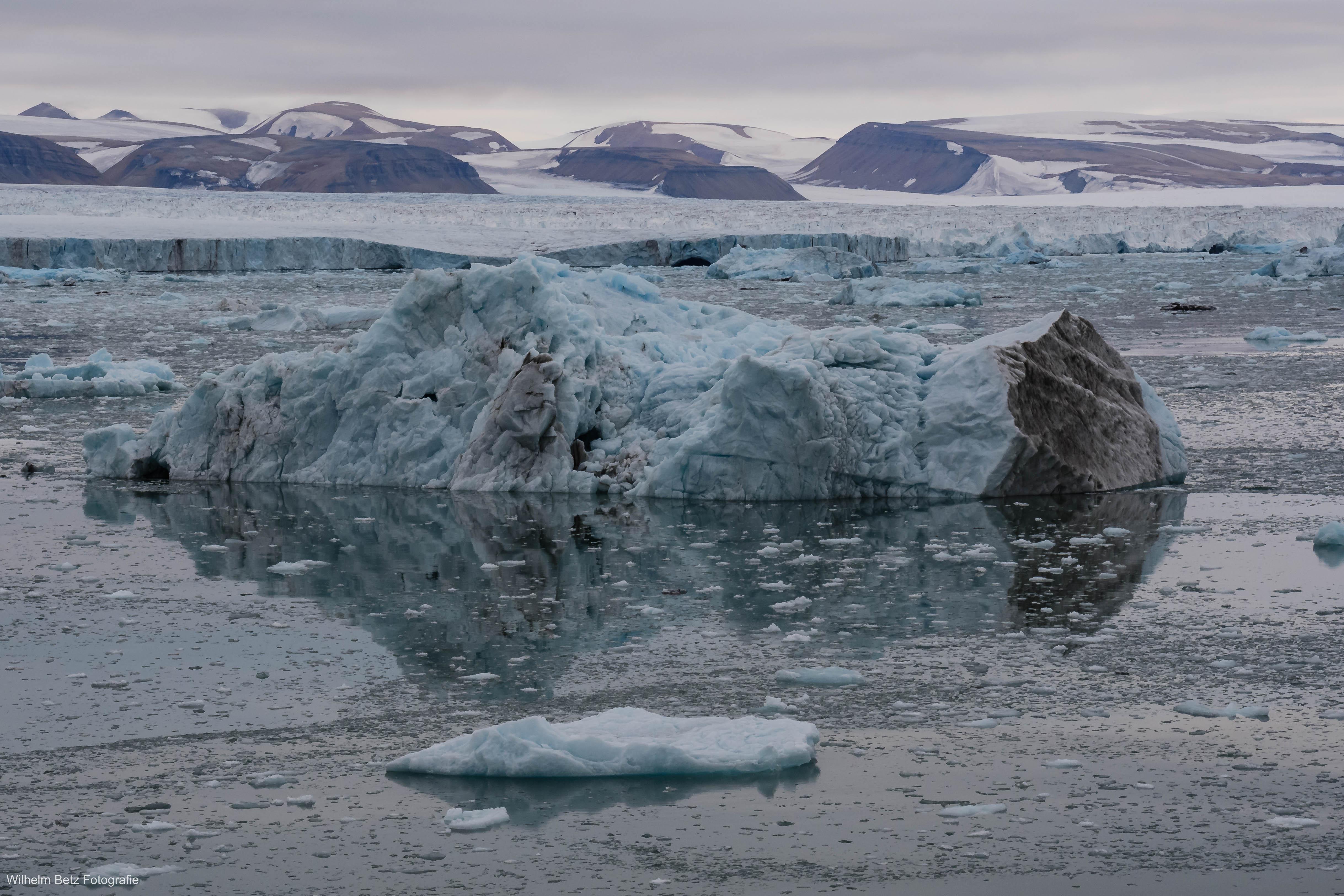 Spitzbergen - Gletscher, Eis und Tiere